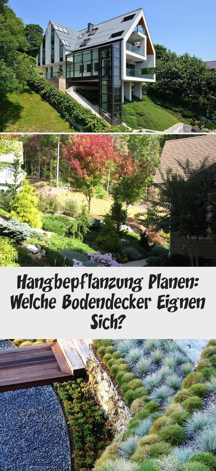 Lavendel Nach Der Blutezeit Gartengestaltungeinfach Gartengestaltungbaum Gartengestaltunghanglage Gartengestaltungeck In 2020 Railroad Tracks Greenhouse Structures