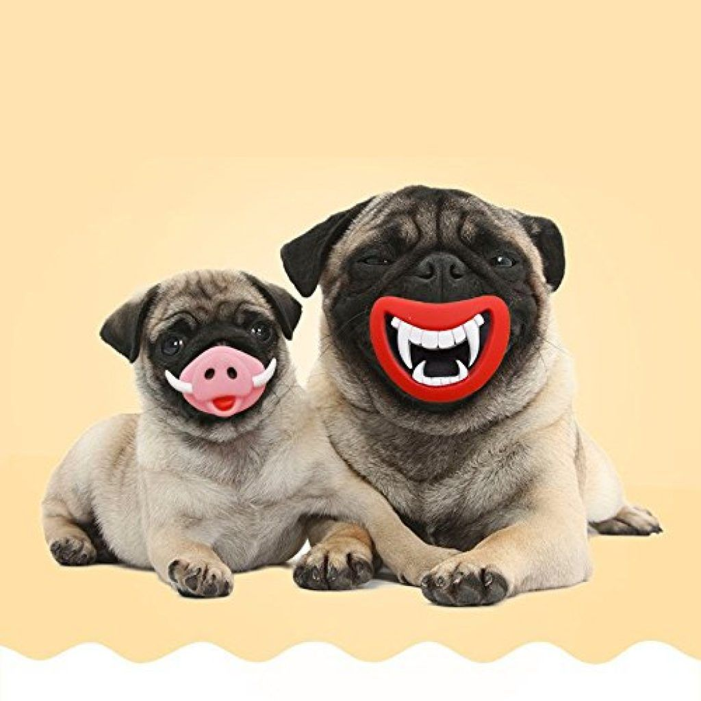 Oinky Fangy Dog Squeaky Toys Funny Face Toys Your Dog Pets