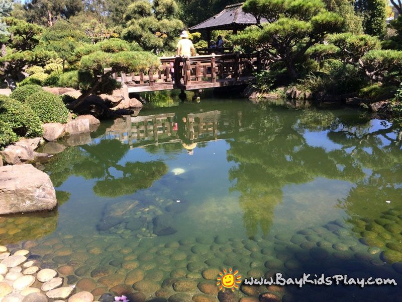 Hayward Japanese Gardens - One of the oldest Japanese gardens in ...