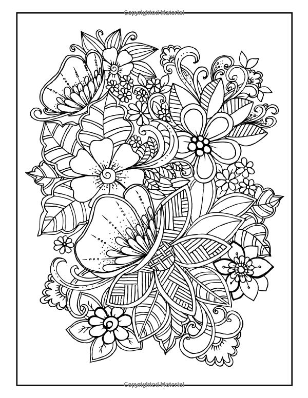 Amazon.com: Adult Coloring book Designs: Stress relief