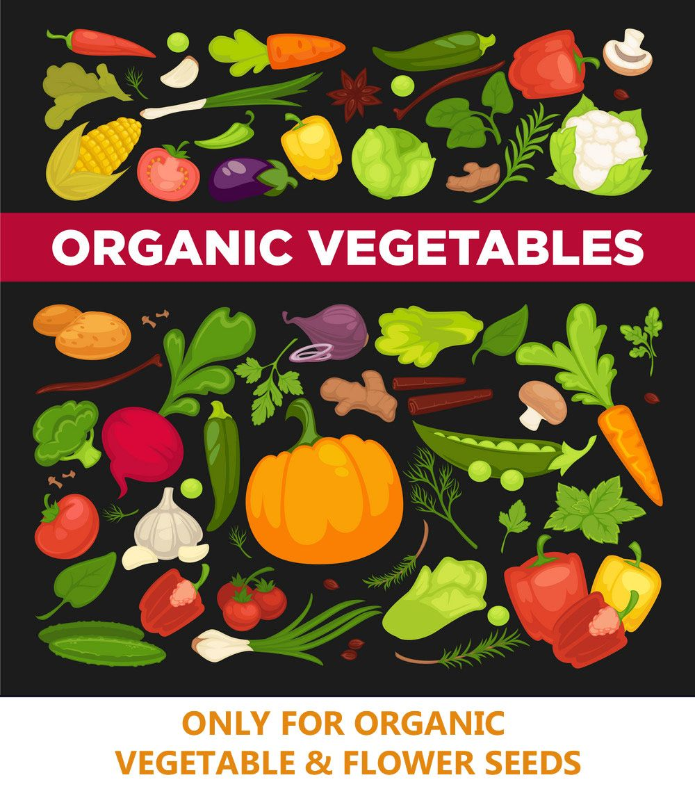 Buy Online High Quality Organic Vegetable Seeds In India At Great