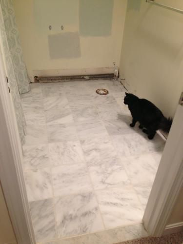 MSI Greecian White 12 in. x 12 in. Polished Marble Floor and Wall ...