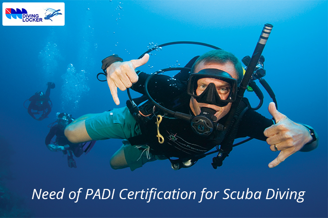 Diving schools offer PADI certification for different levels of ...