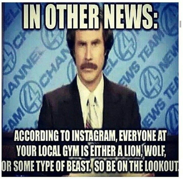Hahahahhaha sounds like my posts!