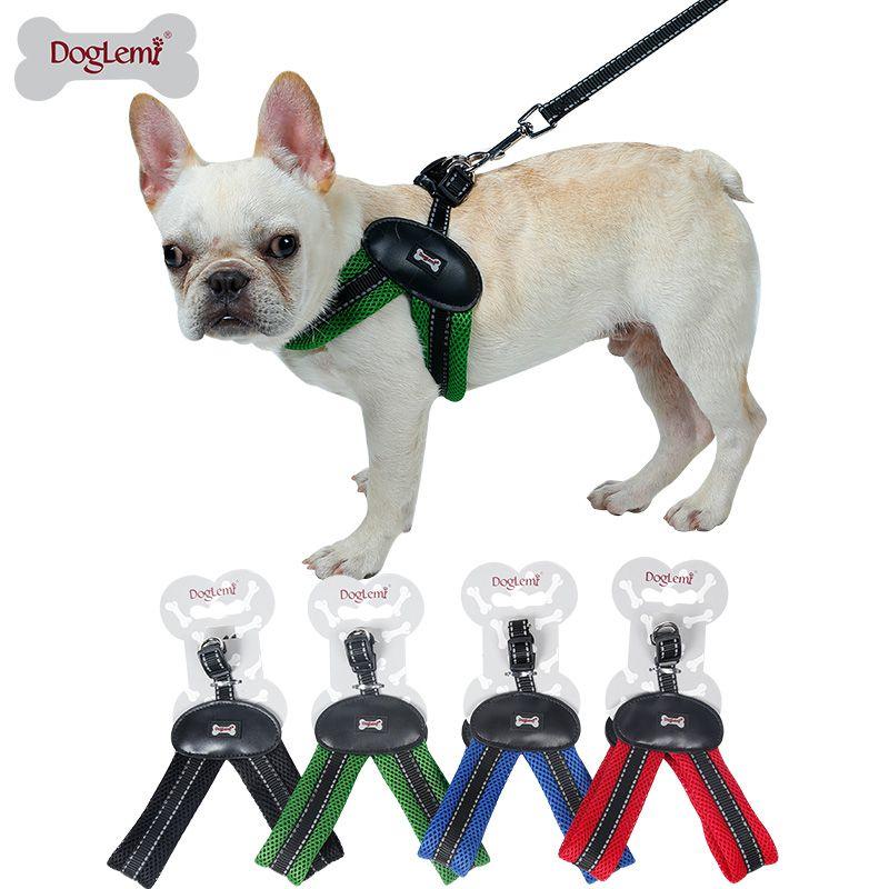 Find More Sets Information About Doglemi Professional Dog Chest