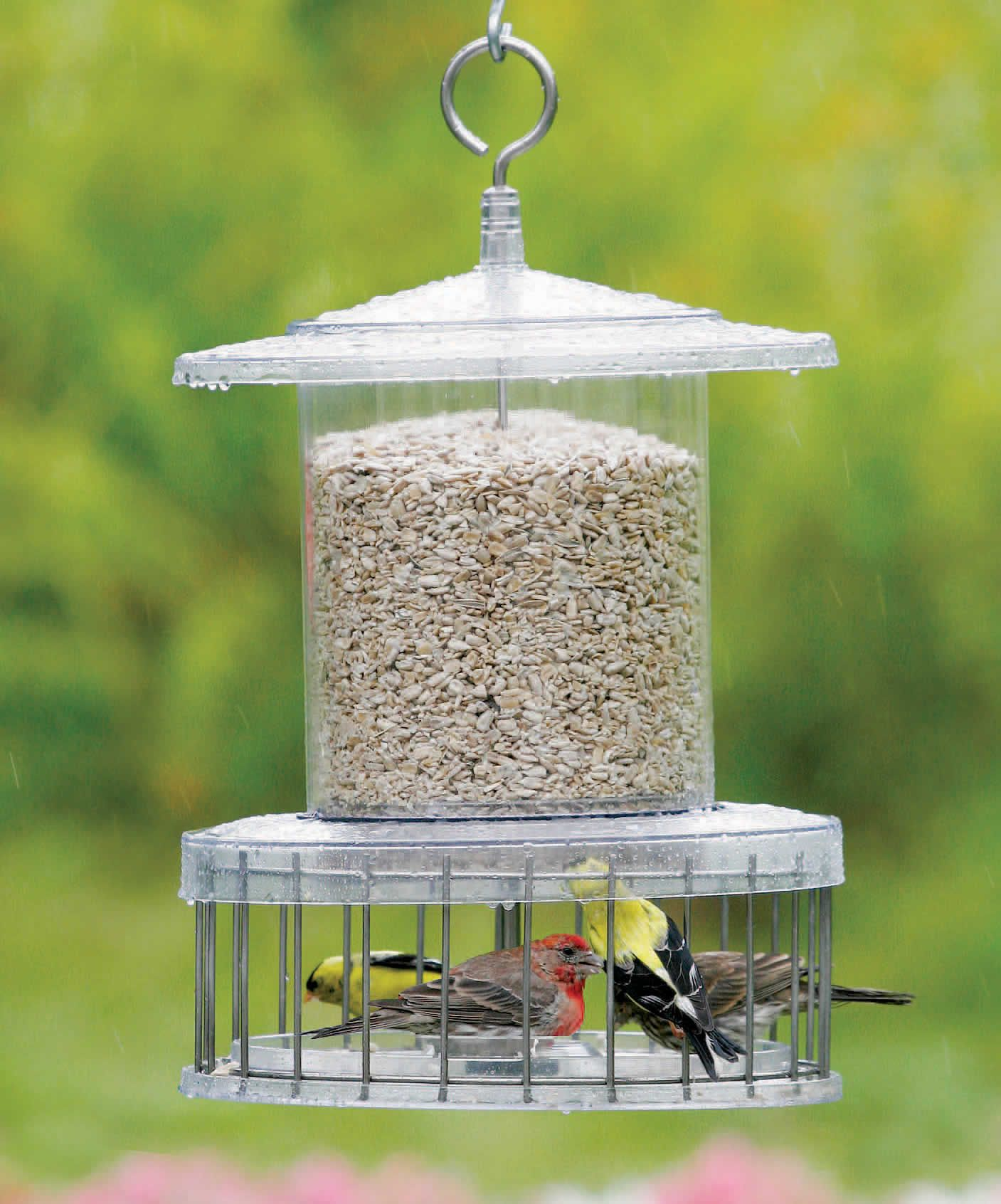 All weather feeder with wire cage bird feeders squirrel