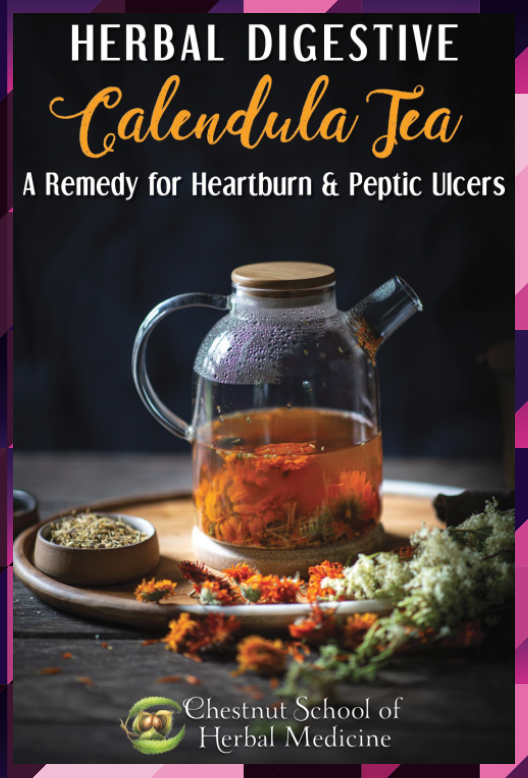 Herbal Digestive Calendula Tea A Remedy for Heartburn and