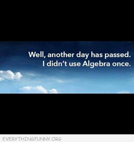 Funny Quotes Well Another Day Has Passed I Didn T Use Algebra Once Algebra Quote Funny Quotes Funny