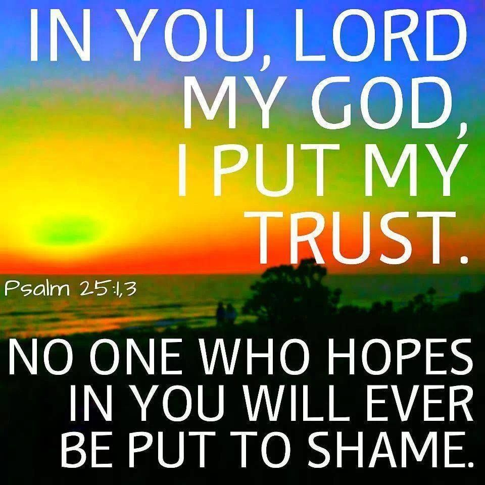 In You Lord I Put My Trust God Trust My Faith Love Scriptures