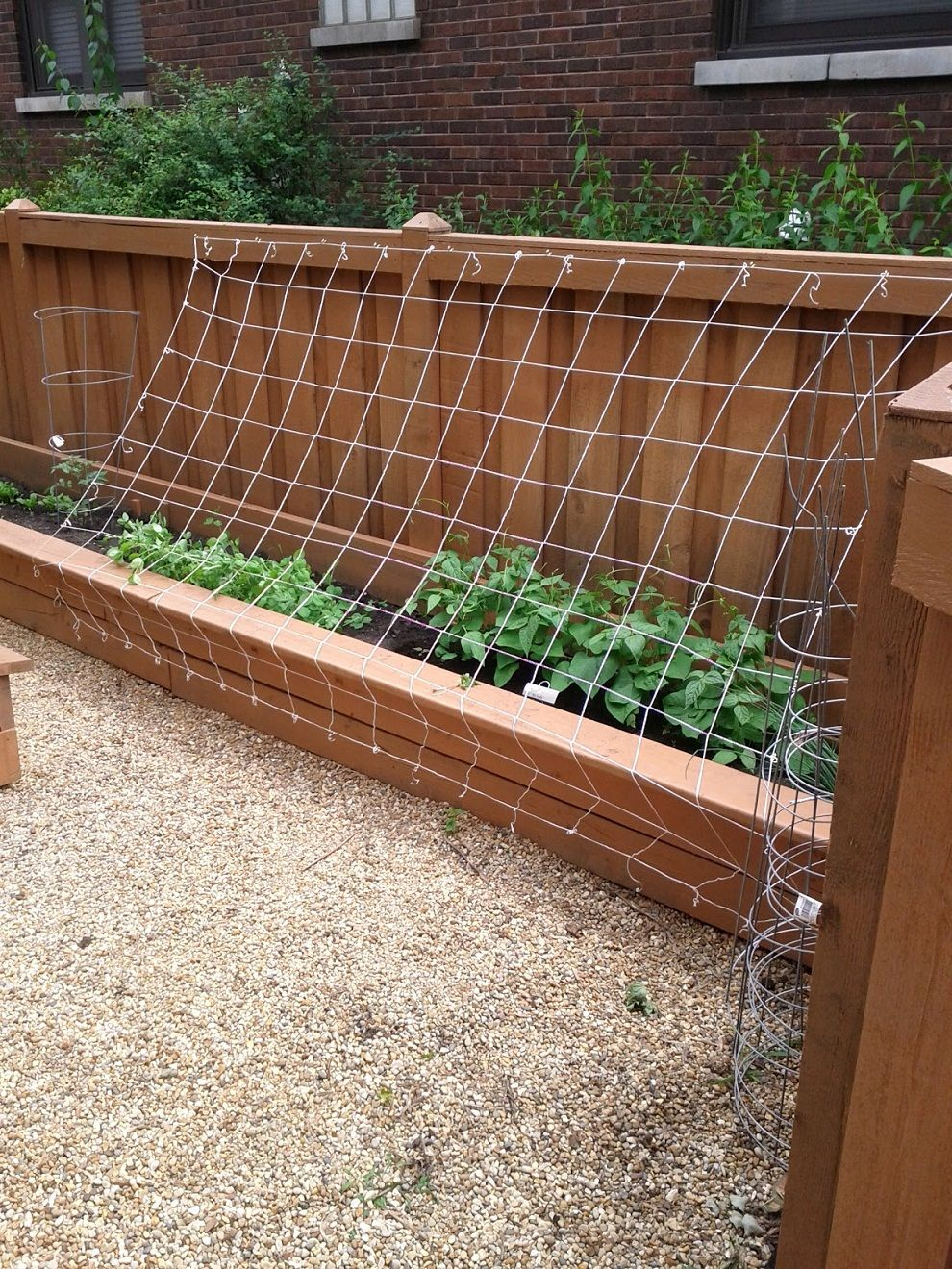 Green Bean Trellis Ideas Part - 31: Green Bean Trellis Designs