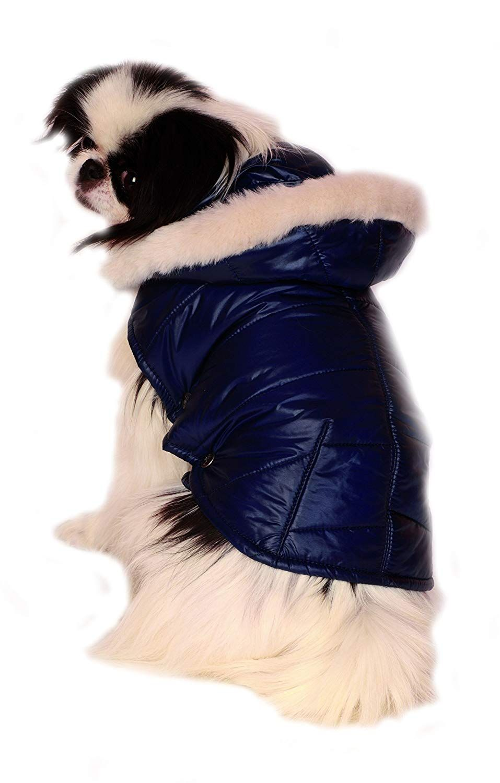 Pin on Cat Apparels