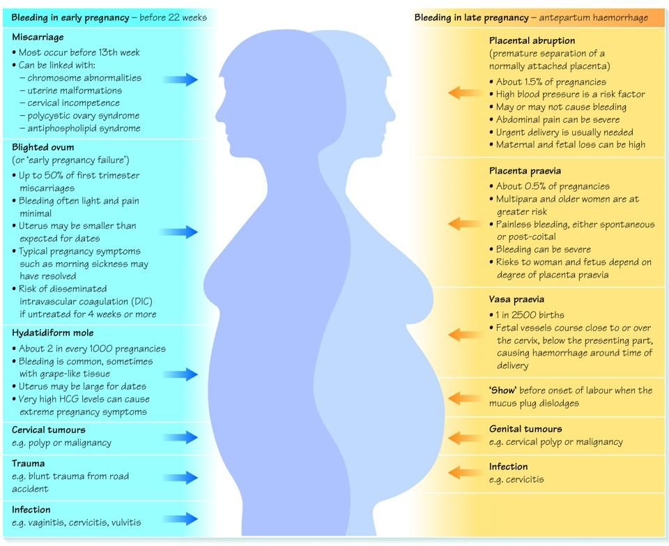 what is clomid pregnancy implantation symptoms