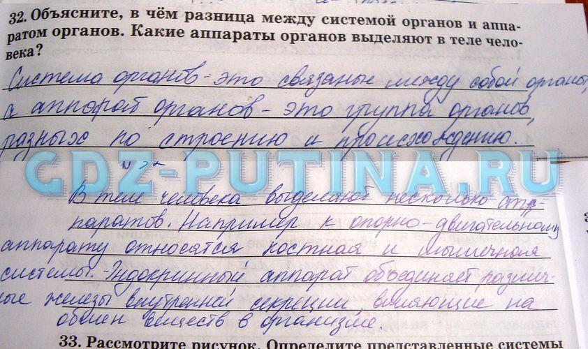 Готовые домашние задания к учебнику русского языка лобчук е.и