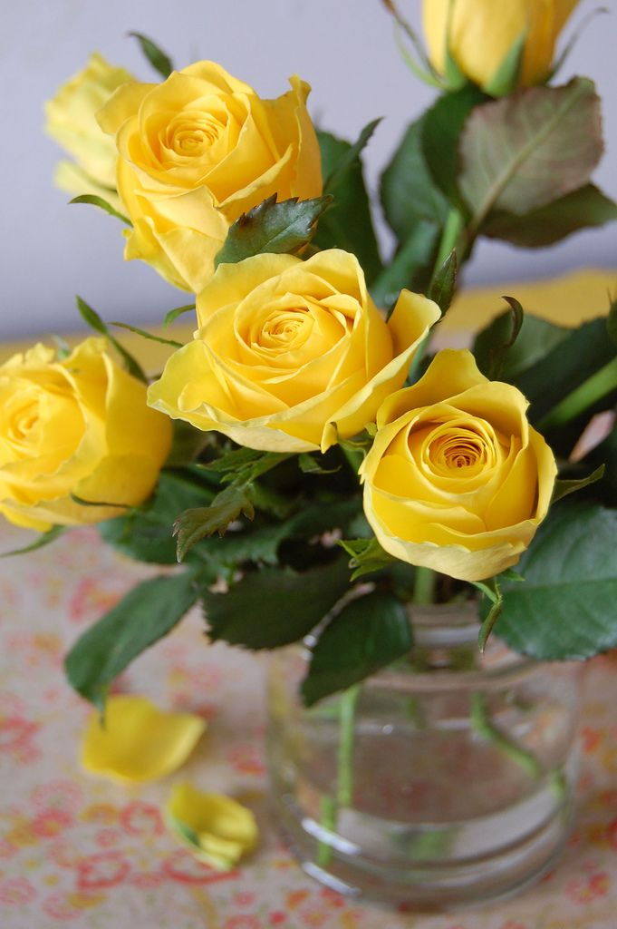 Yellow roses add a pop of color! This is a great example of a few stems making a big statement! Shop roses in a variety of lengths and colors year-round at GrowersBox.com!