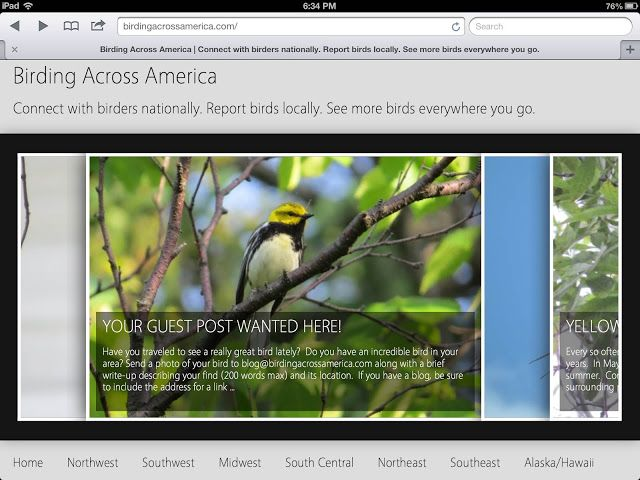 A New Platform For Sharing Bird Photos And Sightings