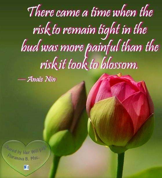 blossom like a flower quote via her will at facebook com