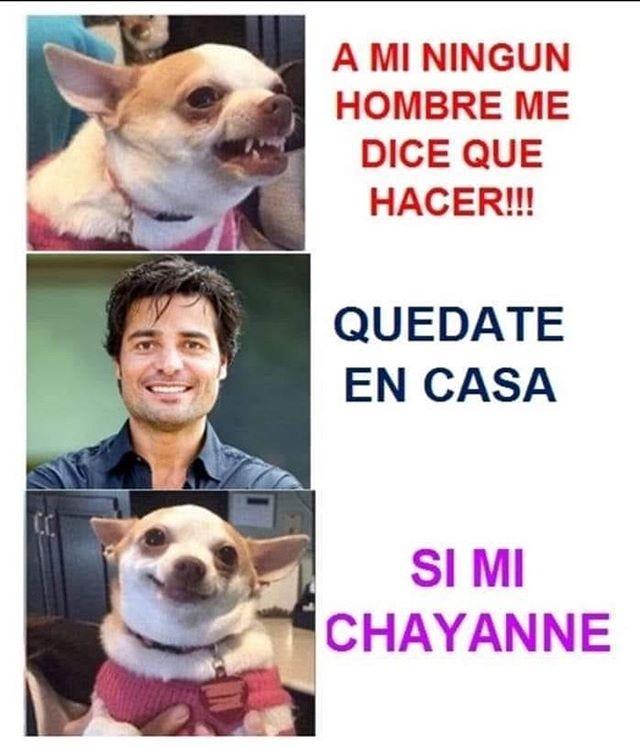 Instagram Chayanne Humor Gracioso Humor