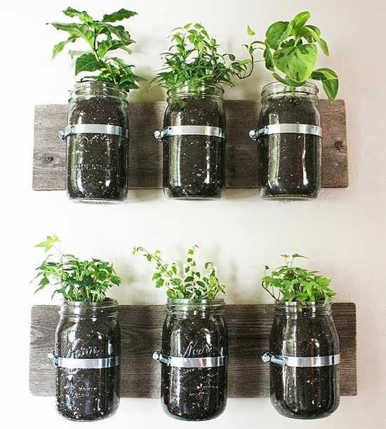 Small Space Herb Garden Ideas suzie fraziers vertical garden Diy Herb Gardens For Every Space
