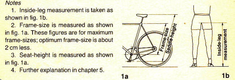 Bike 101 How To Find The Right Size Bike