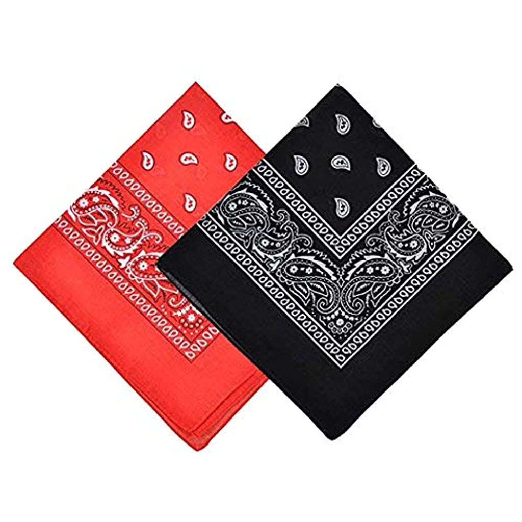 "Bandana Face Mask Women Men Paisley Cowboy Headband Scarf, 21.2"" X 21.2"""