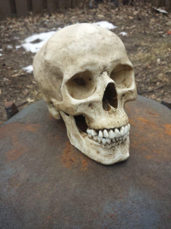 Menschliche Schädel Replikat mit niedrigeren von DarkCrop auf Etsy ...