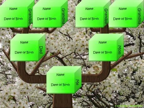 many Family Tree Forms   Charts   Templates Family Trees - charts templates