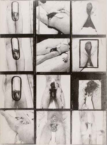 penis photography - Google zoeken