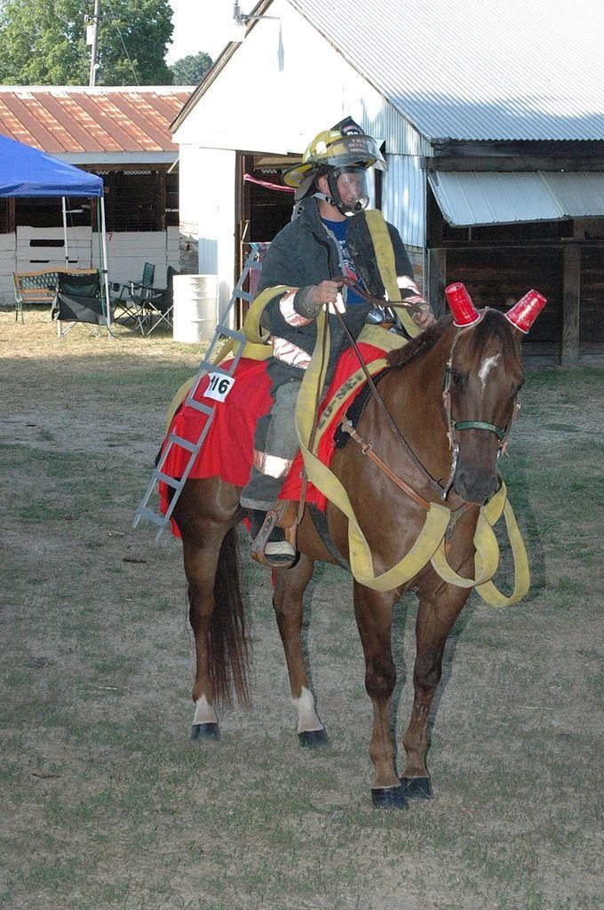 Firefighter horse costume. Dress your American Quarter ...