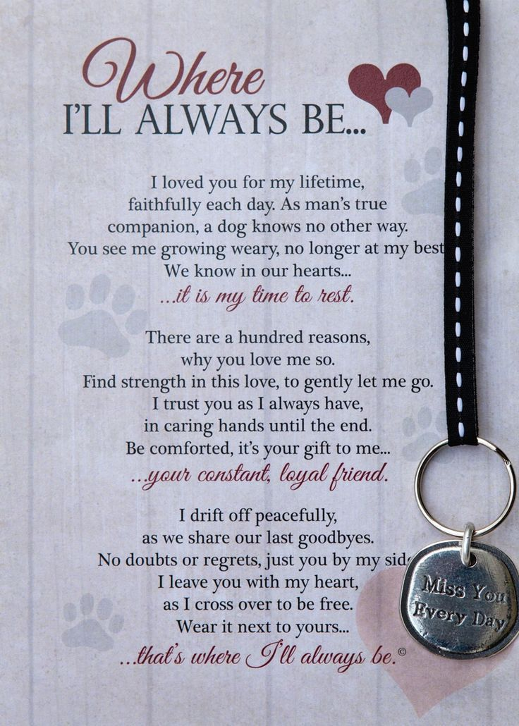 Where I'll Always Be Dog Memorial Key Chain Pet loss