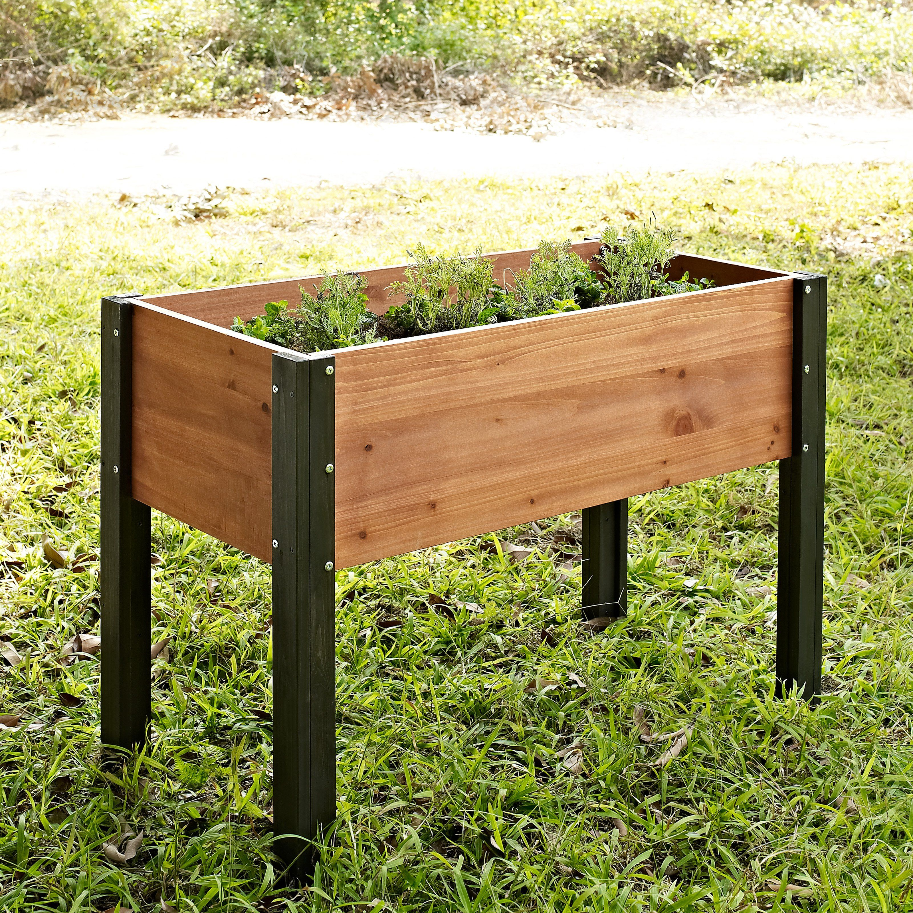 Coral coast bloomfield wood elevated garden bed 40l x