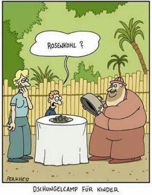 Lustige Spruche Dschungelcamp Lustige Comics Und Witze