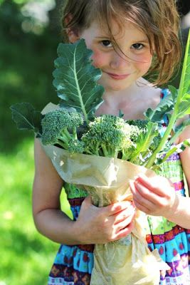 Children benefit from learning where food comes from - and it's not the supermarket. A Day in the Country...a very favorite blog!