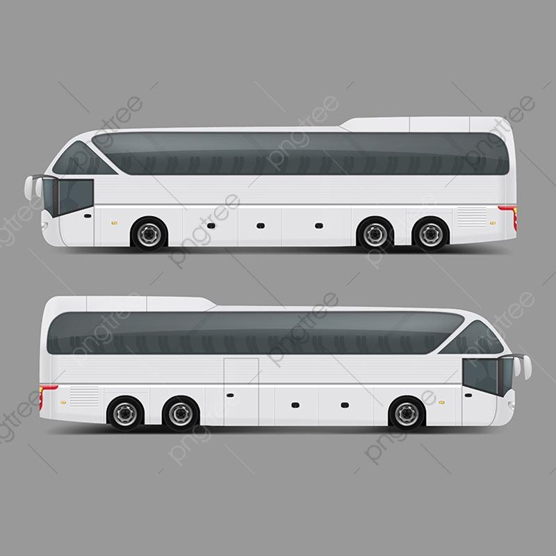 Private Charter Tour Or Coach Bus Realistic Vector Private Charter Chartered Png And Vector With Transparent Background For Free Download Bus Travel And Tourism Tours