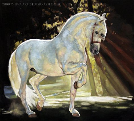 Andalusian Horse Horse Painting Horse Art Horse Artwork