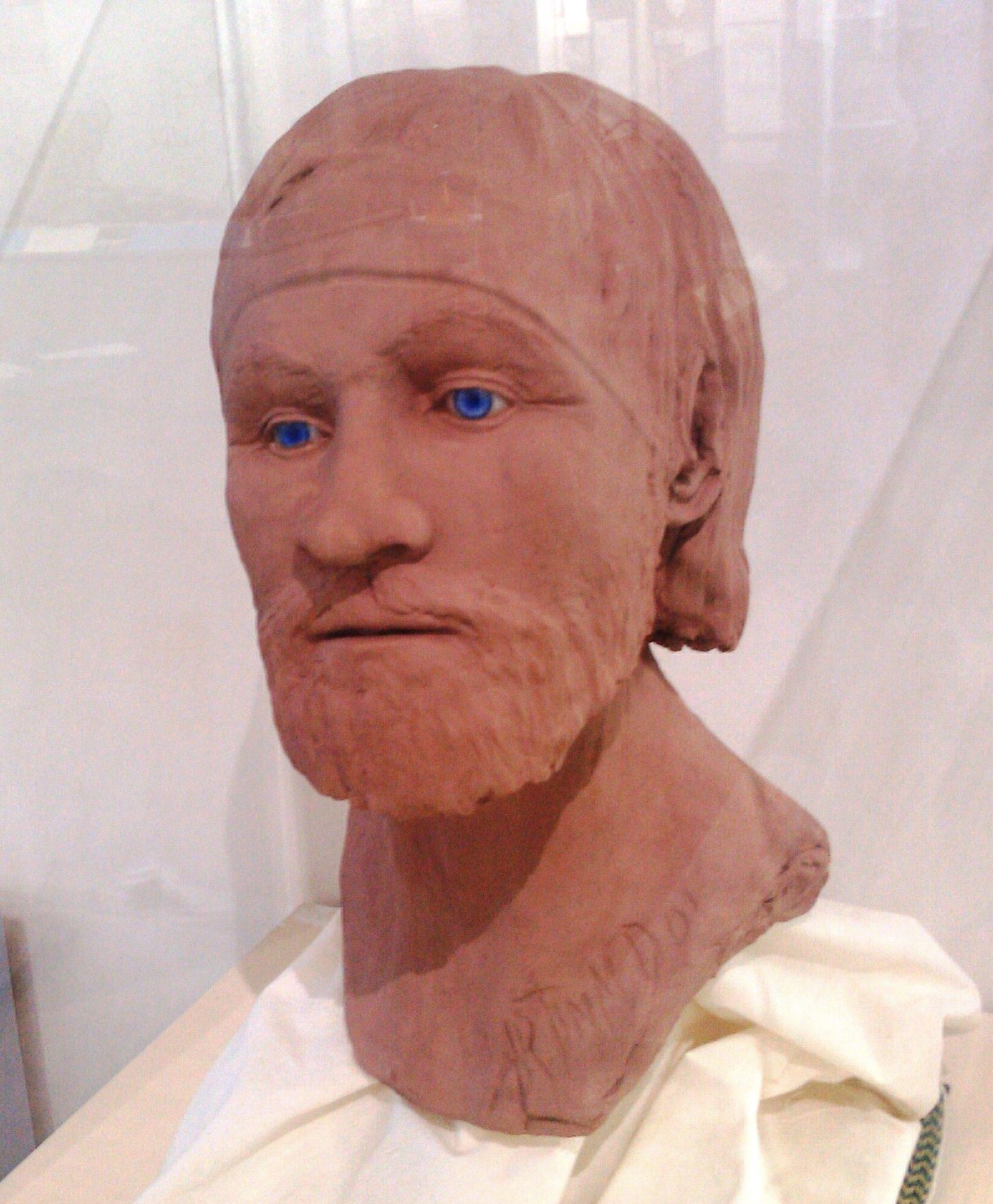 Facial reconstruction of a Viking