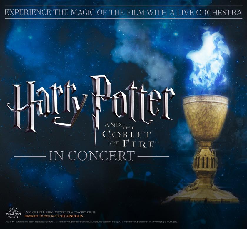Pin By Liz Hoefner Adamis On Banned Books Week Goblet Of Fire Harry Potter Goblet Harry Potter Magic