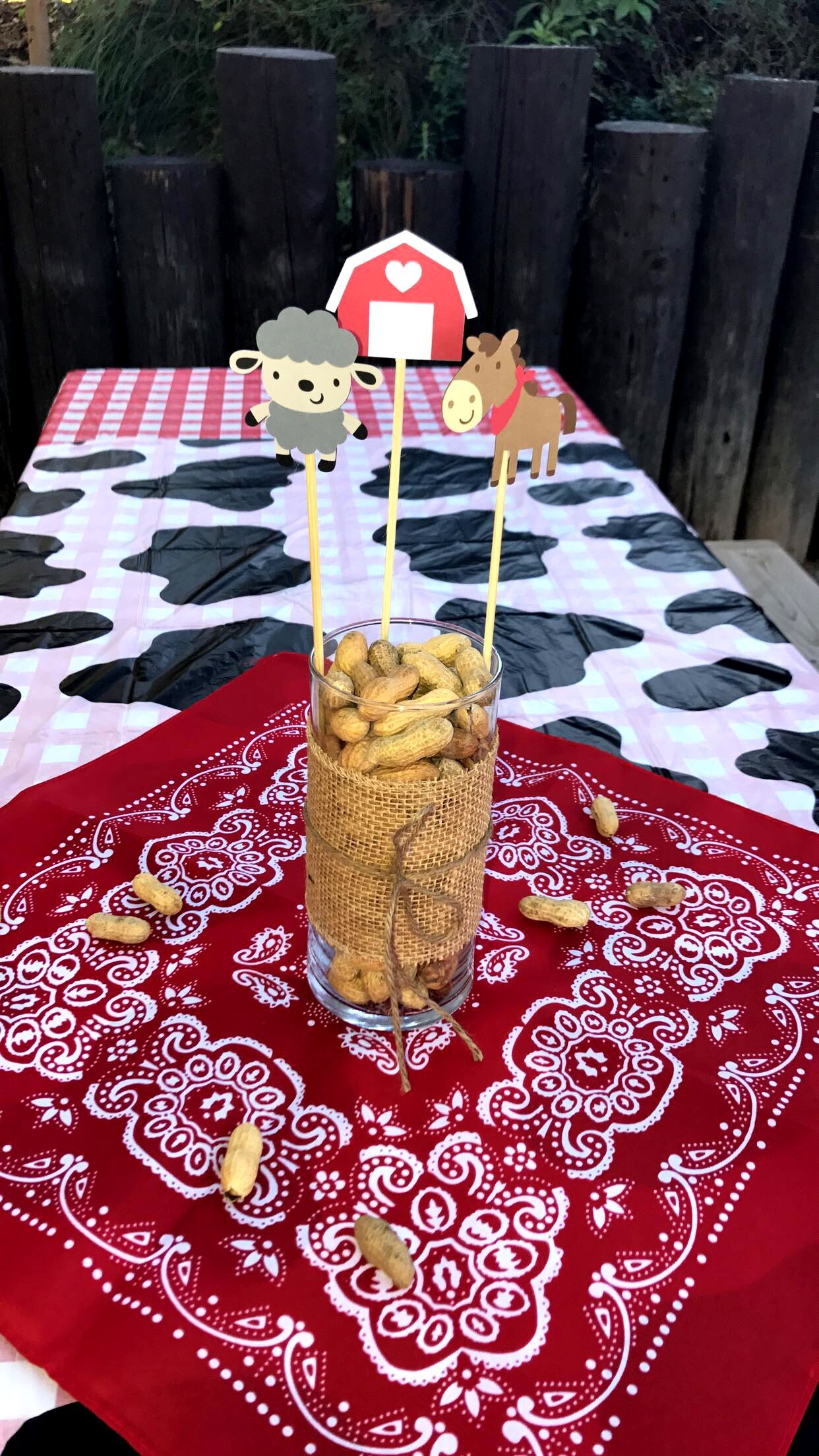 Farm Birthday Party Centerpieces
