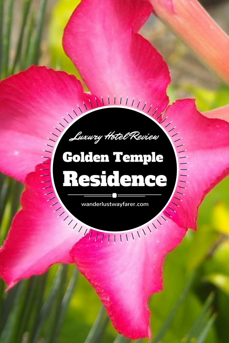 Golden Temple Residence in Siem Reap, Cambodia, is a golden experience.: