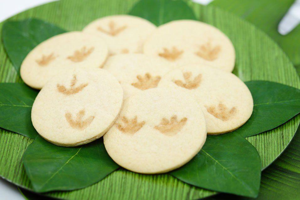 Dino Footprint Fossil Cookies #dinosaurfossils