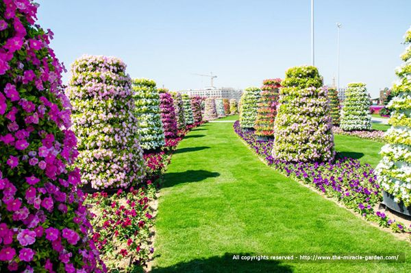 Most beautiful flower gardens in the world sky designs for Most beautiful garden flowers