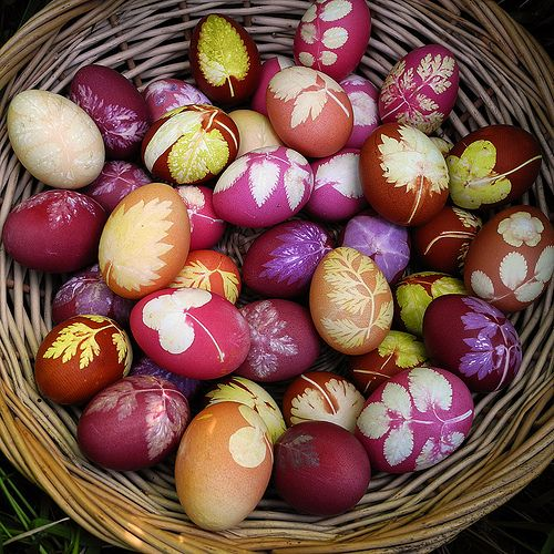 Beautiful easter eggs. Using leaves from your garden press against egg and hold in place by using cut up nylon stockings, make sure the stockings are pulled very tight and secured with a knot or rubber band. Boil in pan with fruits or vegetables added for color. Carrots for orange, black berries for purple, spinach for green etc.