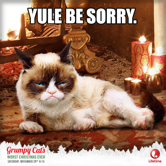 Catvent Grumpy cat christmas, Grumpy cat, Grumpy cat humor