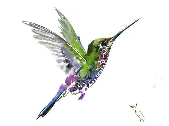 Hummingbird Painting, 12 X9in,bright Color Flowers
