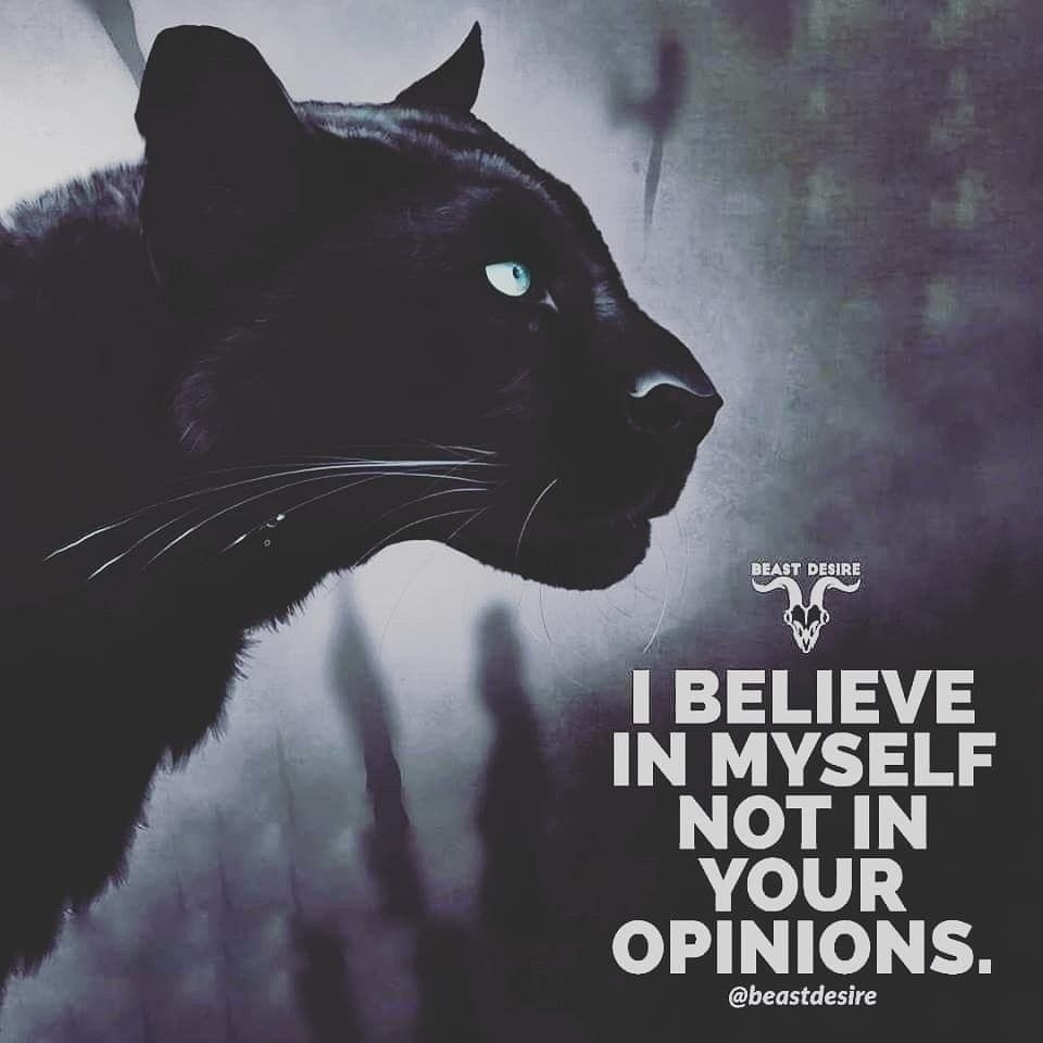 I Believe In Myself Not In Your Opinions Motivation Mindset Champion Quotes Panther Quotes Attitude Quotes