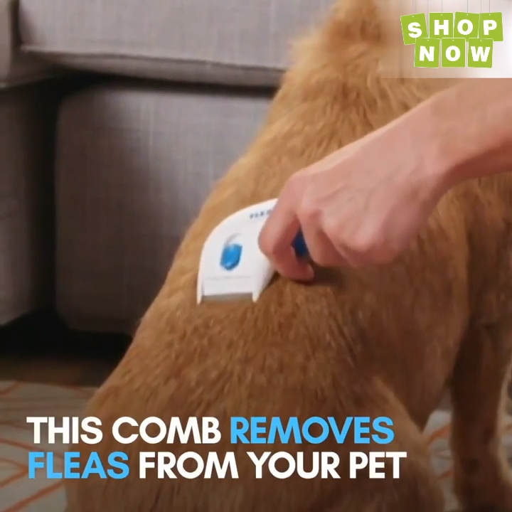 Photo of Electric Flea Cleaner Comb