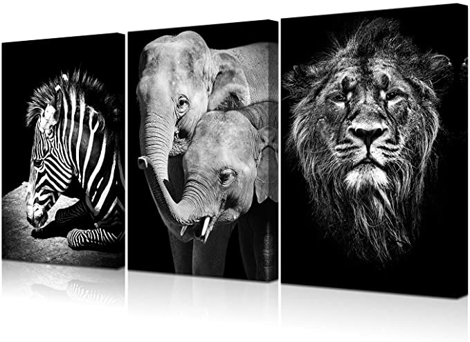 Amazon Com Vvovv Wall Decor 3 Piece Canvas Wall Art Poster Print Wildlife Elephant Zebra Pictures Bla Zebra Pictures Posters Art Prints Black And White Lion