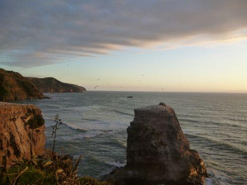 Farmreise in Neuseeland - Nature Trailz