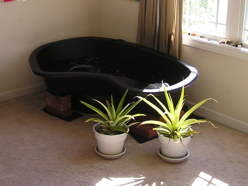 indoorturtlepondkits habitat outdoor diy pond my fur babies and turtle pinterest habitats diy pond and diy and crafts: diy patio pond