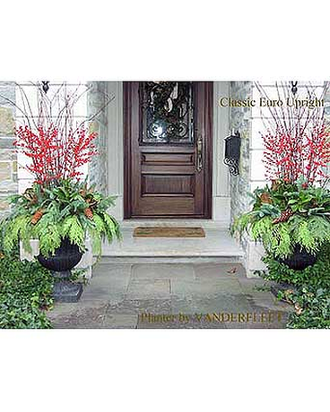 Classic Euro Holiday Planter Holiday planter, Outdoor
