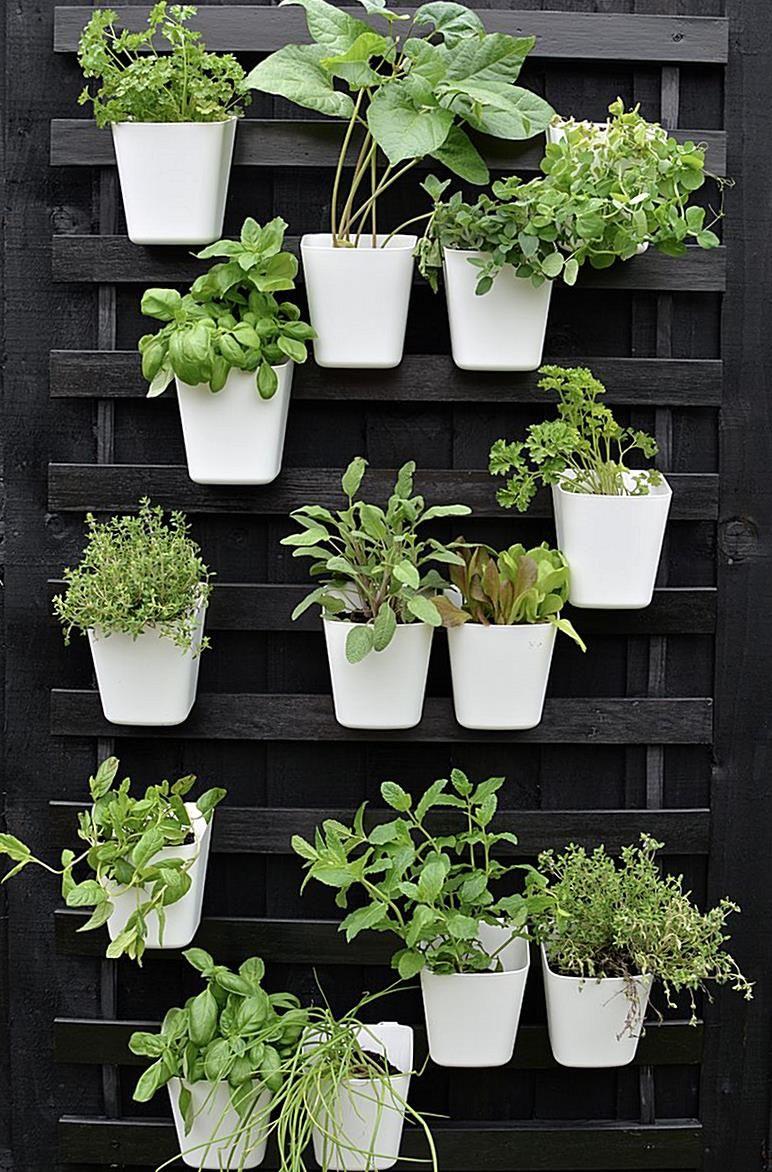 modern vertical garden IKEA hack, 10  Dikey bahçeler, Walled